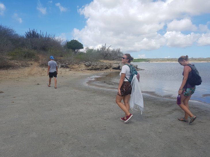 Walk by the salt pond